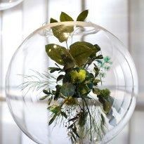 """Blooming Earth"", Claudia Bonollo"
