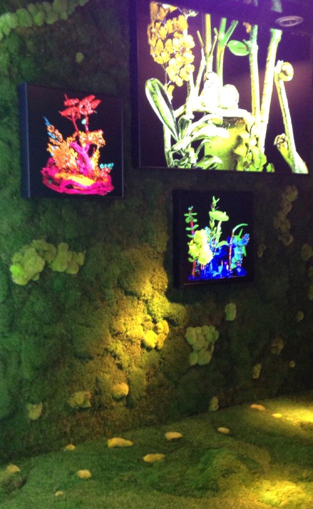 le jardin d'èté, instalación con elementos vegetales y cajas de luz  en el escaparate de Clorofila Digital, 2014