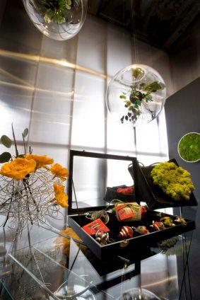 planetas vegetales diseñados por Claudia Bonollo para Monamour Natural Design Joyas vegetales de Martina Belmar para Monamour Natural Design