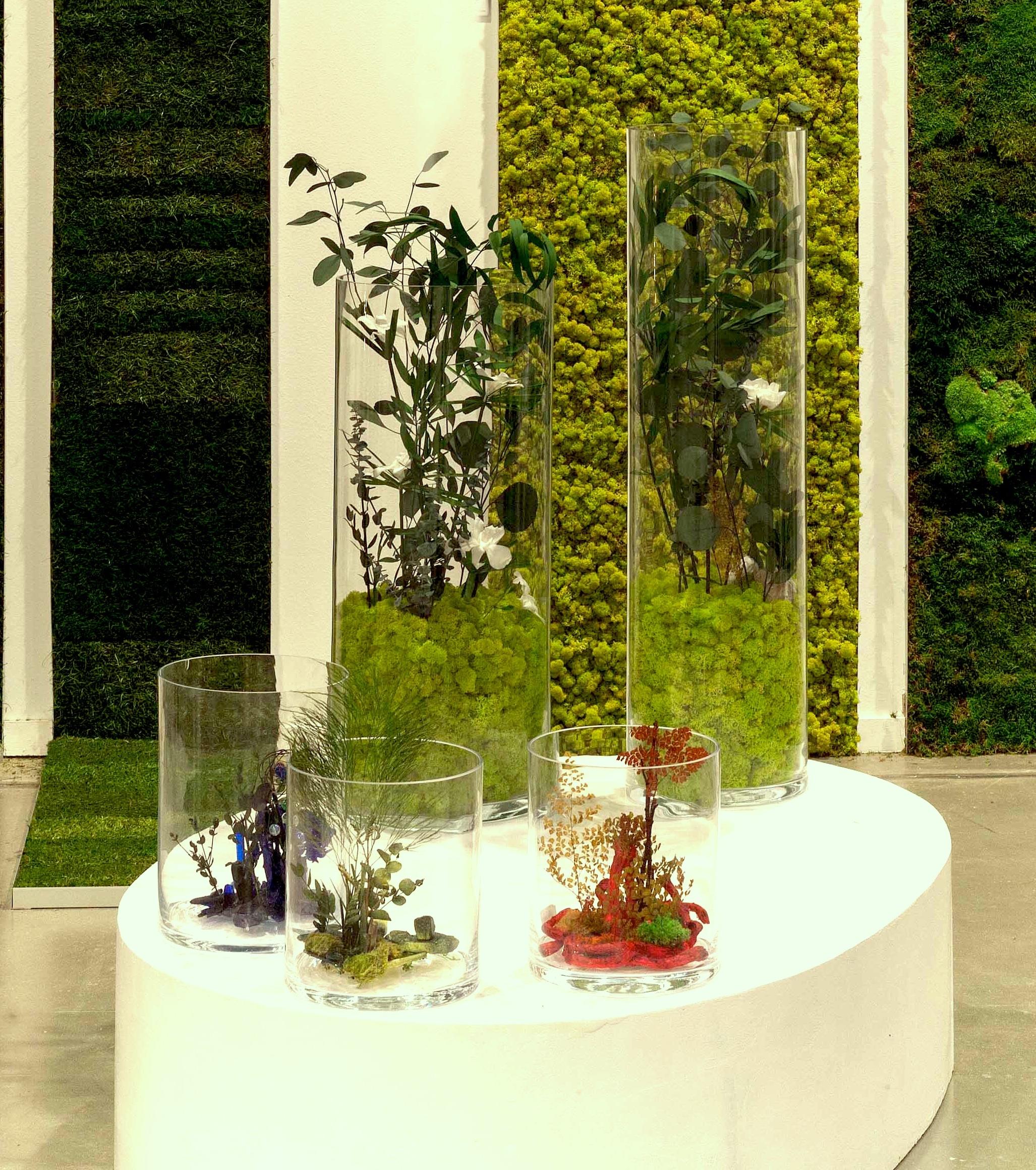 Los jardines de adonis claudia bonollo for Historia de los jardines verticales