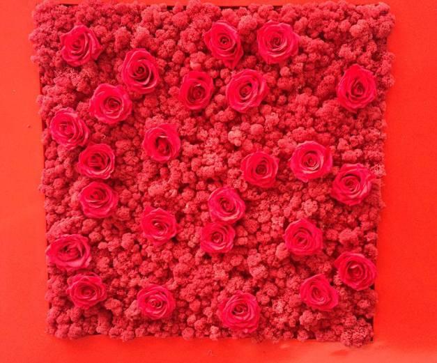 Rosa di maggio, Claudia Bonollo  para Monamour Natural  Design
