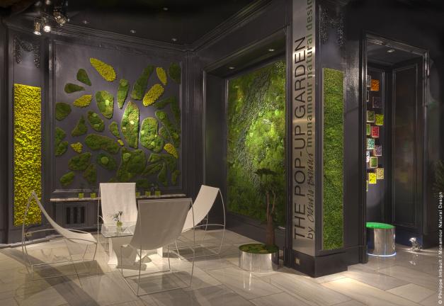 Jardines verticales claudia bonollo - Clorofila digital madrid ...