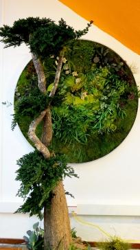 jardin-alma-circular-06