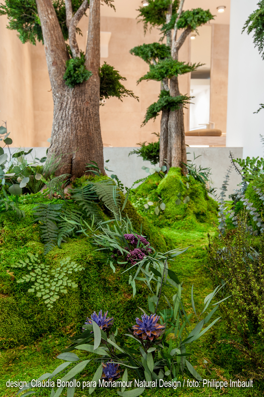 Jardines del alma claudia bonollo for Alma de jardin pacheco